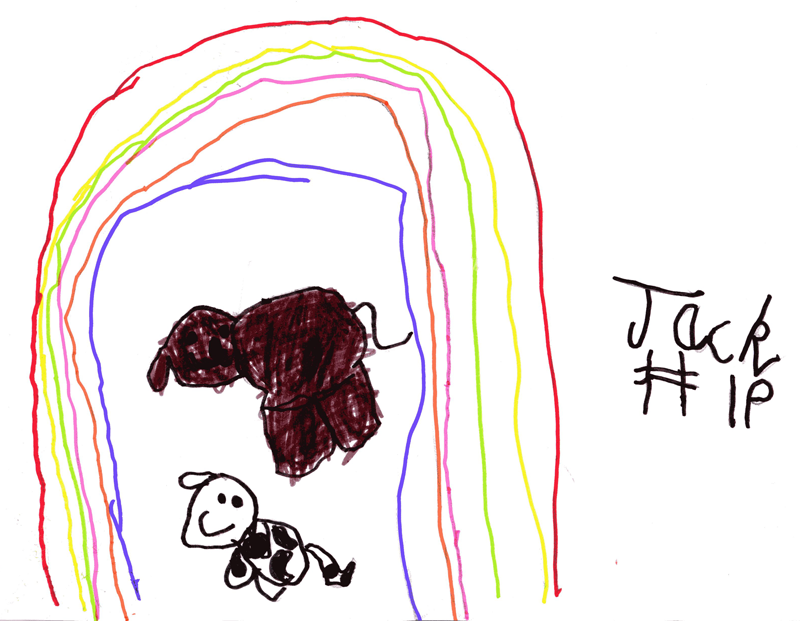 Rainbows and dogs for Gail Walshe