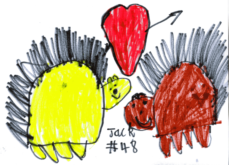 Two hedgehogs in love for Amy Minns