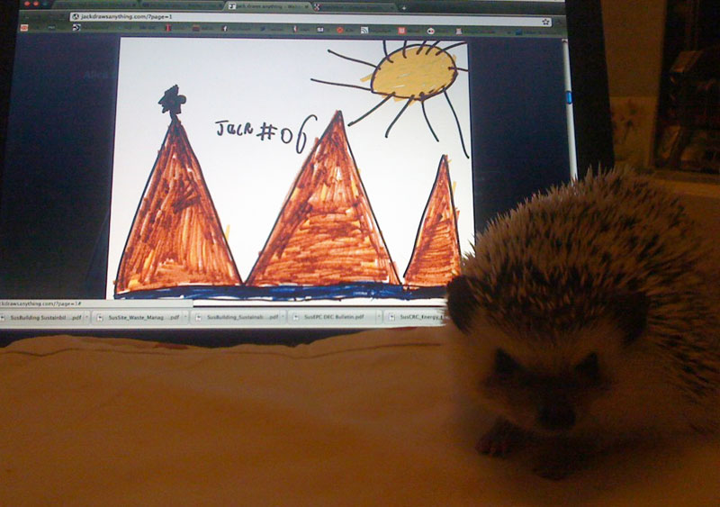 Alice the hedgehog checks out Jack's picture of Alice the hedgehog