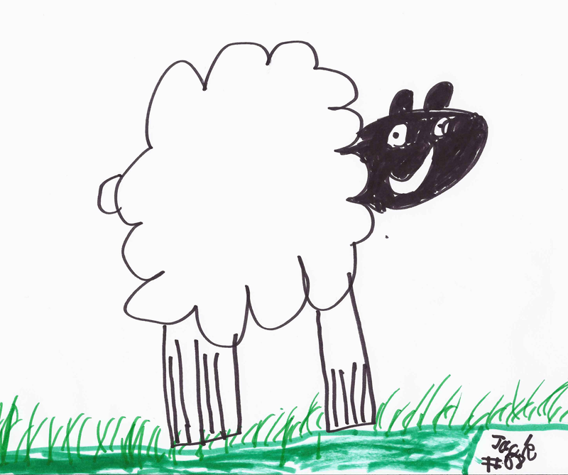 Sheep for Carl Shapiro