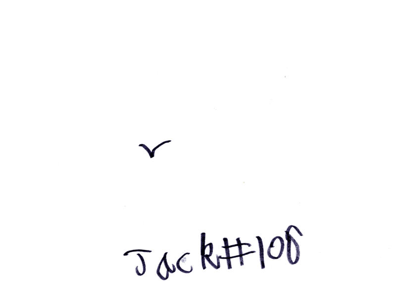 Small seagull in the sky for Phil Munro
