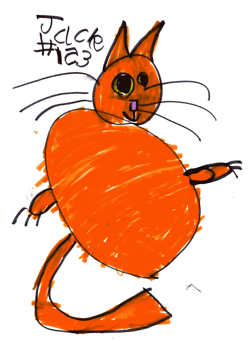 Big fluffy ginger cat called Hobbes for Joanne Mcalonan