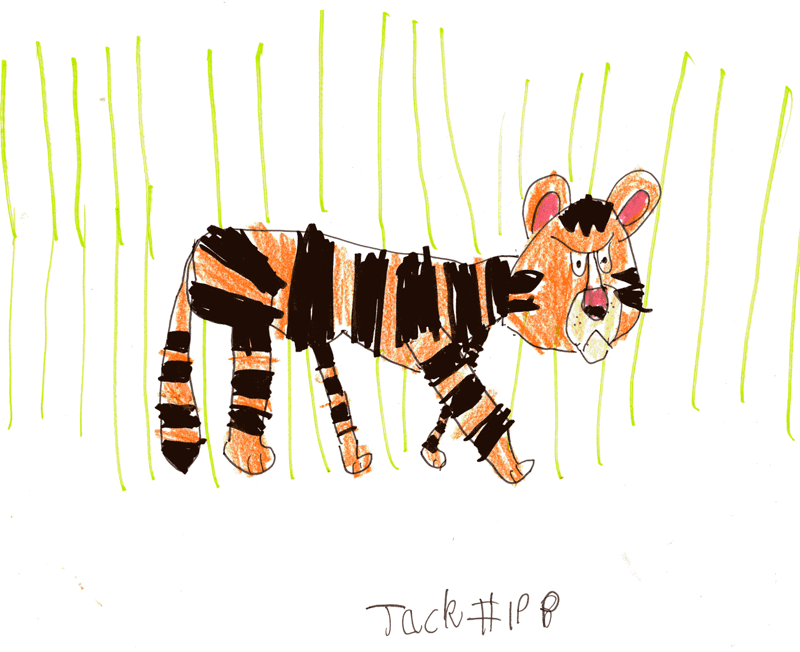 Tiger in the Jungle for Jay Selley