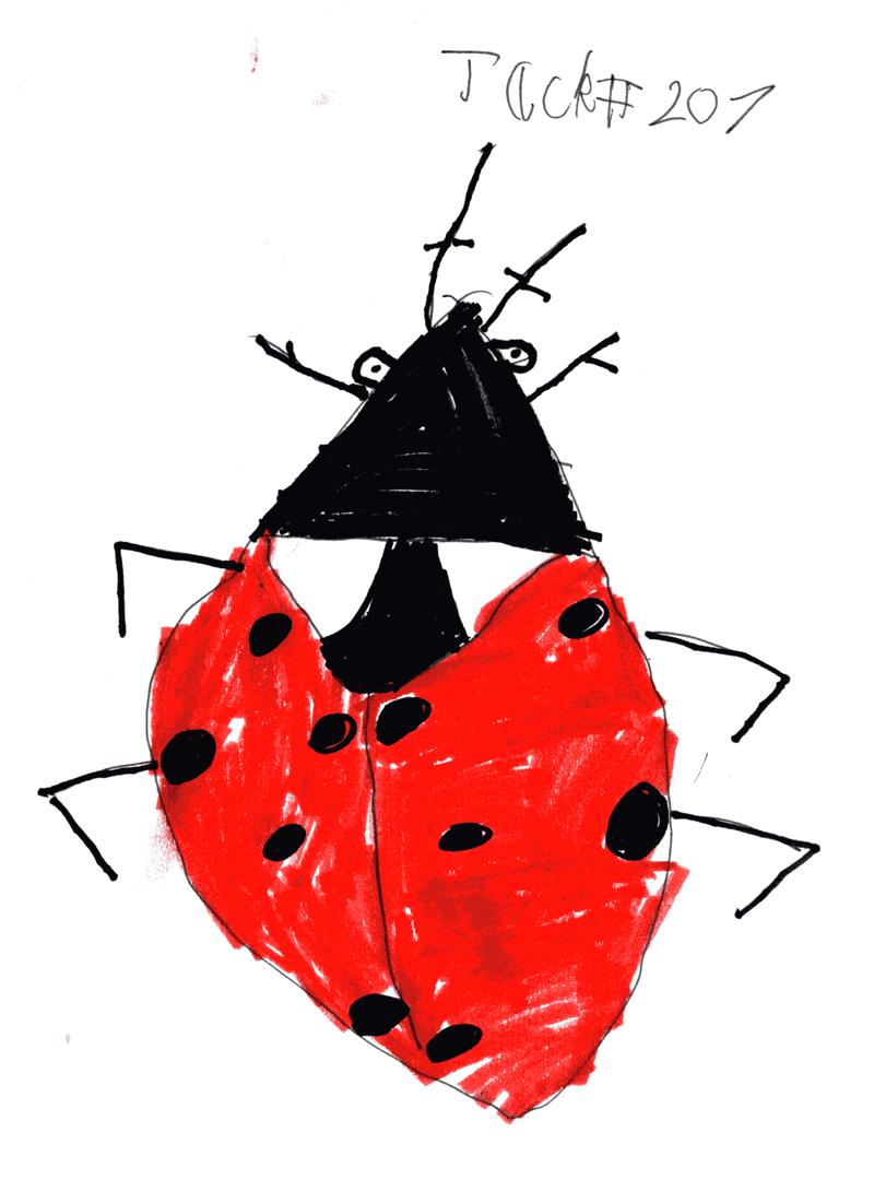 Ladybird for Lorraine Murray (via Alison Denham)
