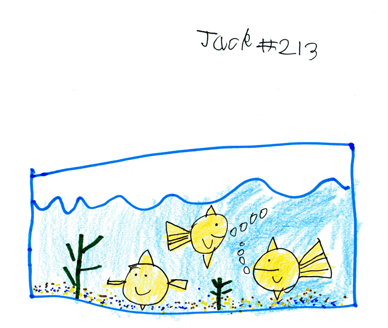 Three fish in a tank for Jenny Murdoch