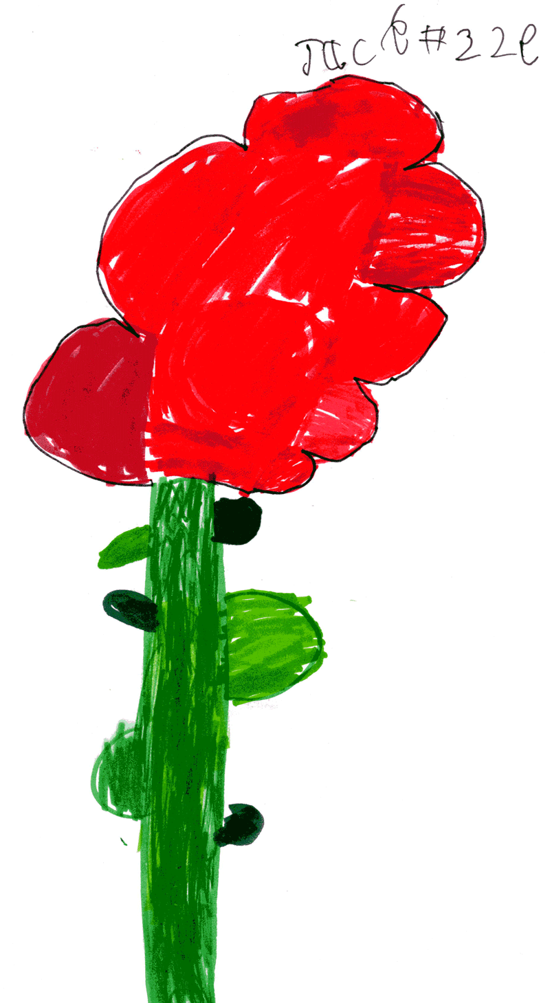 BIG red flower for Lisa Gray