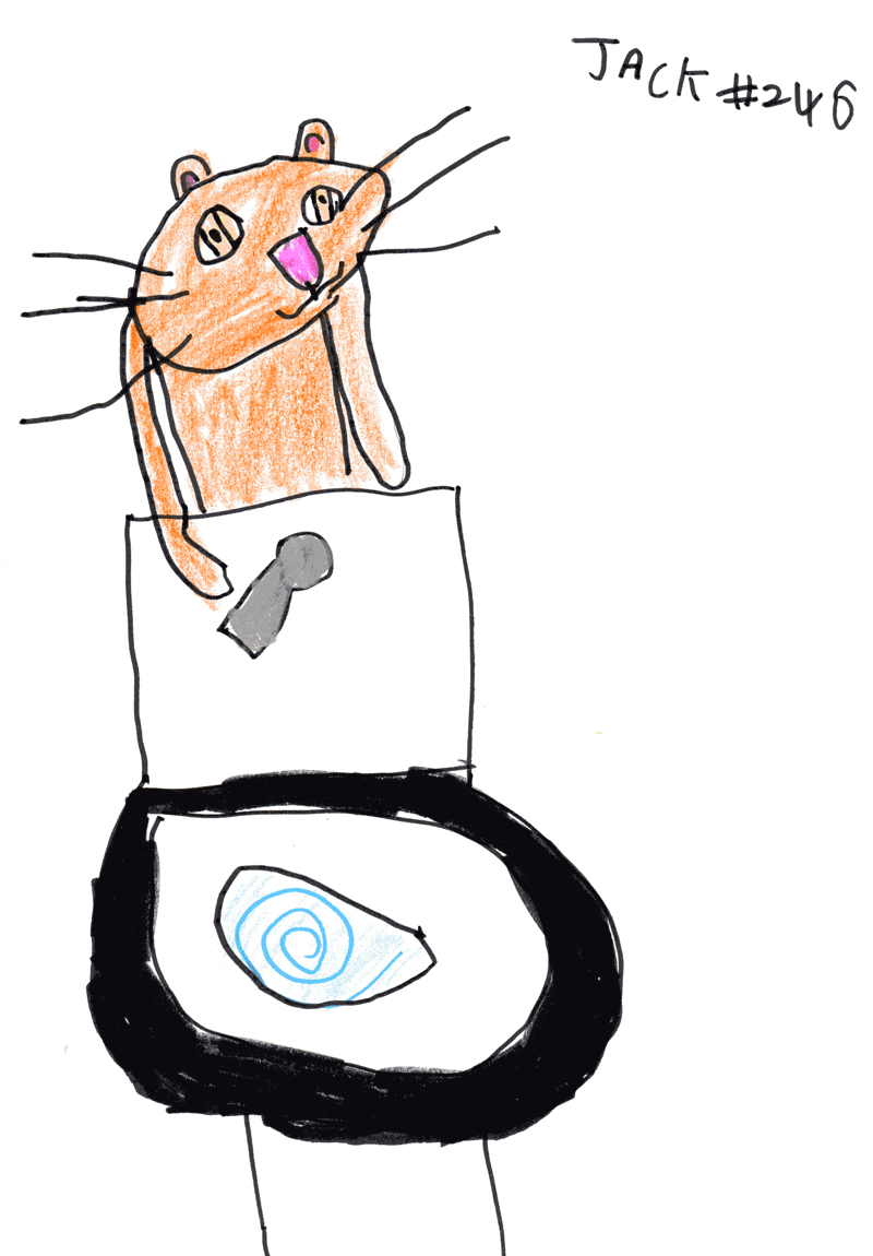 Cat flushing a toilet for Suzy Shipman