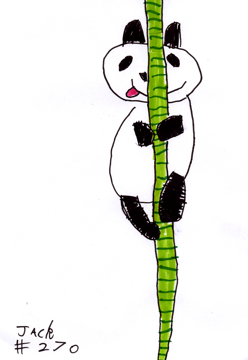 Panda eating some bamboo for Helen Merritt