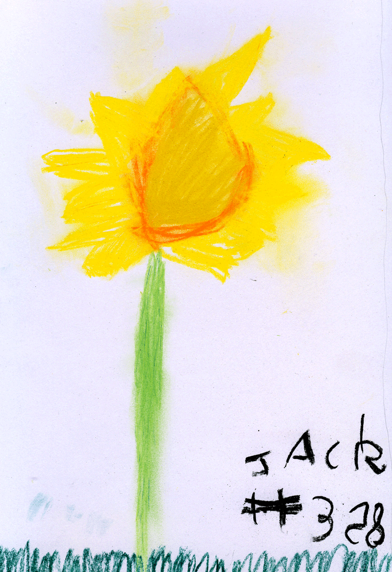 Sunflower for Heather Brown
