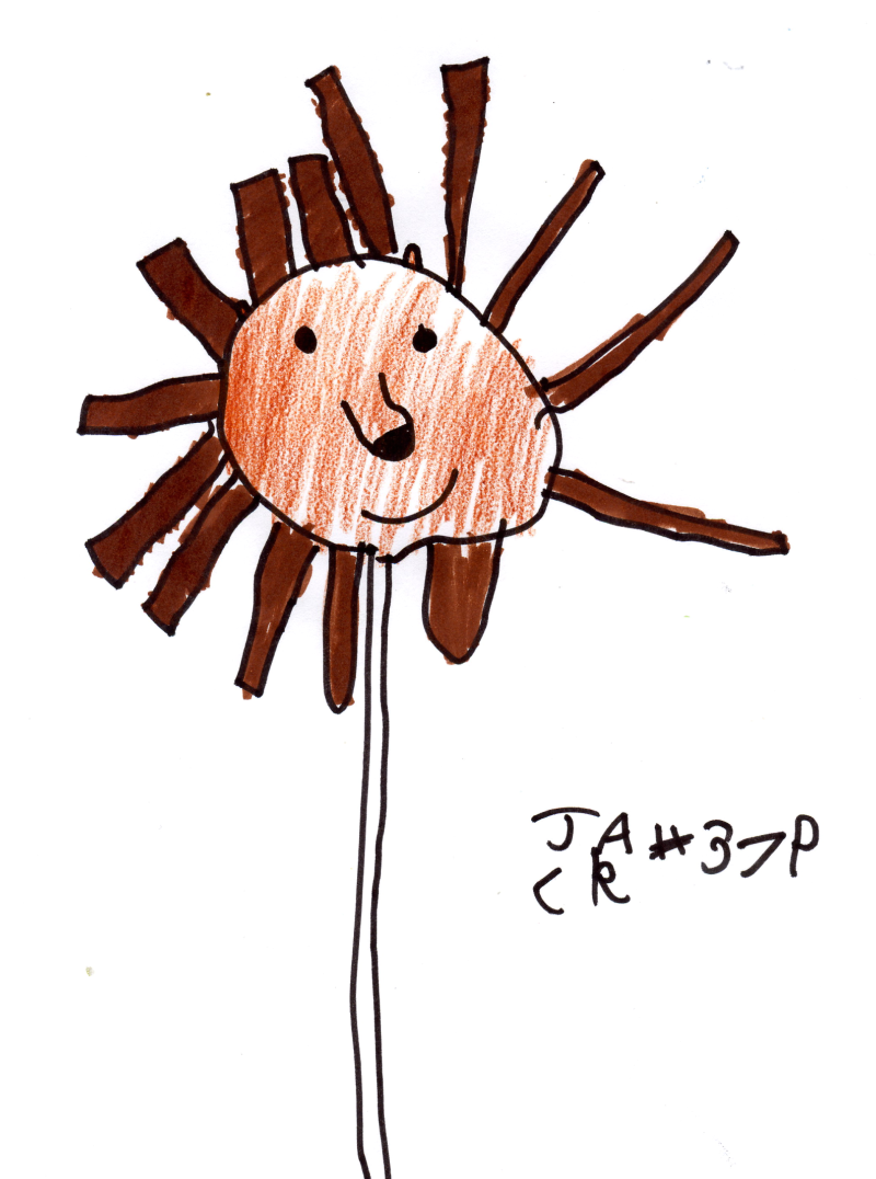Jack's dream Cake Pop (Hedgehog of course) for Katie Witherden