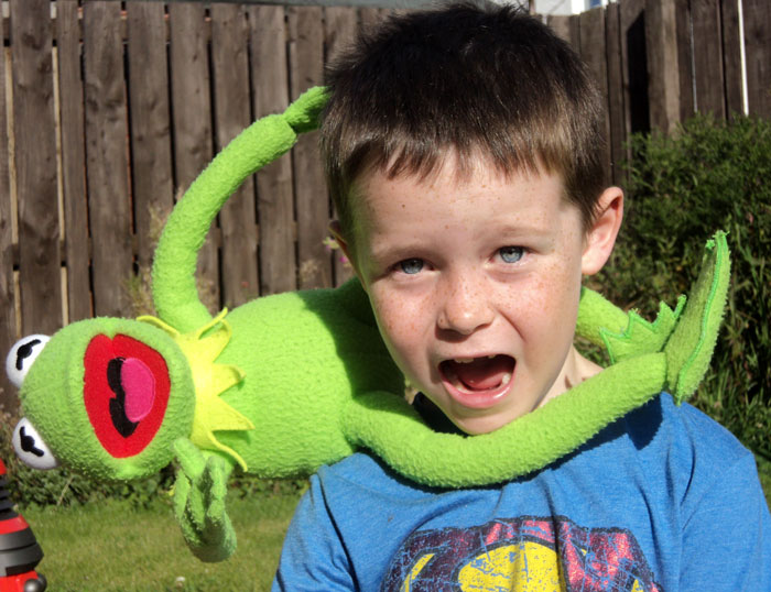 The Muppets are beating Jack–he needs your vote!