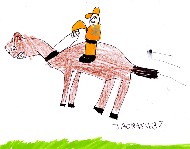 Brown racehorse with the jockey wearing an orange top with a silver star & an orange hat for Alison Angell