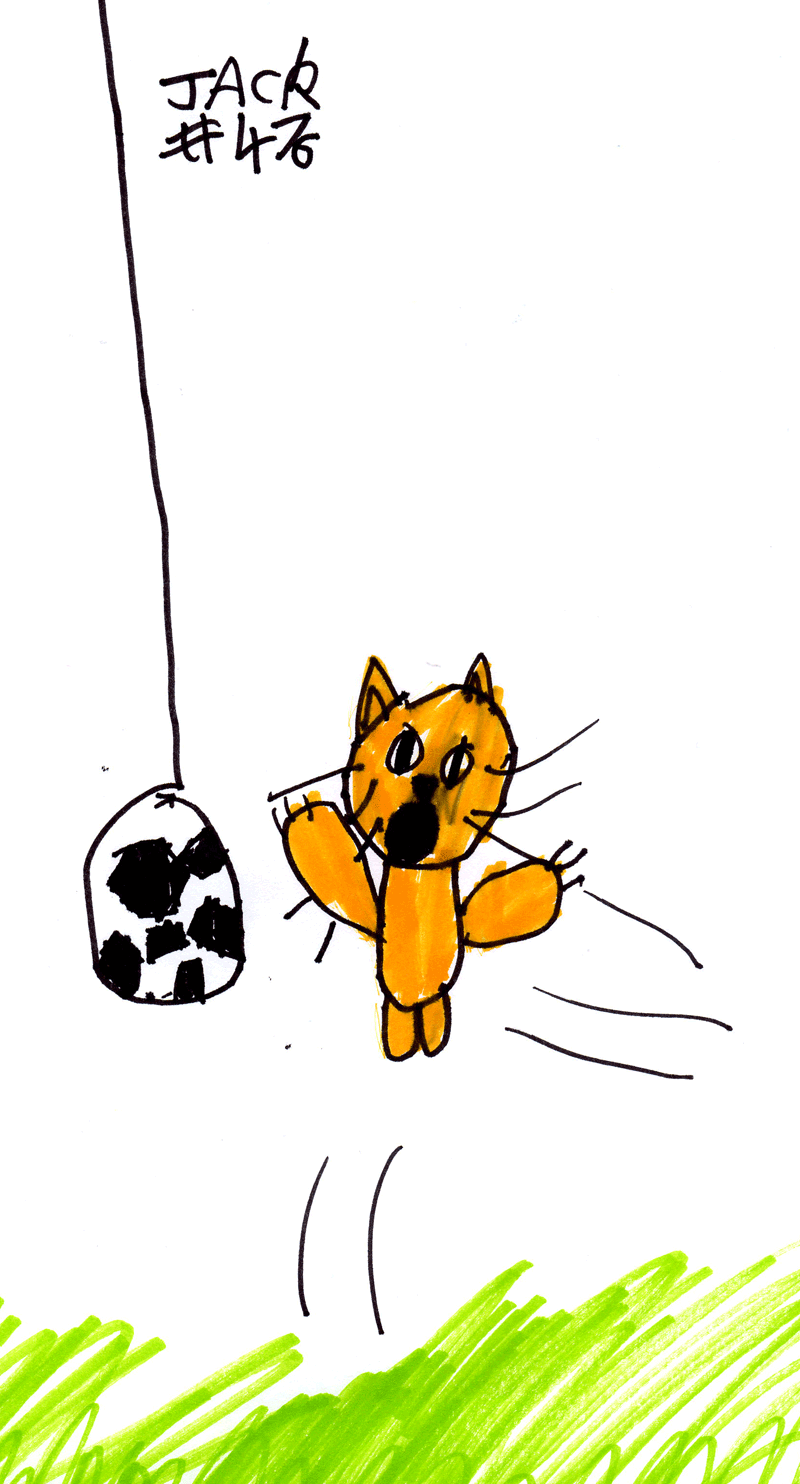 Kitten playing with a football for Alison McLuckie